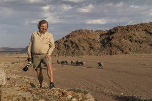 Michael Poliza Desert Elephants Kunene Region Namibia